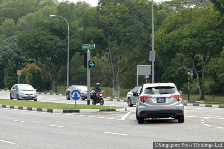 The traffic light at the junction of Tampines Avenue 12 onto the slip road of Tampines Expressway towards Seletar Expressway.