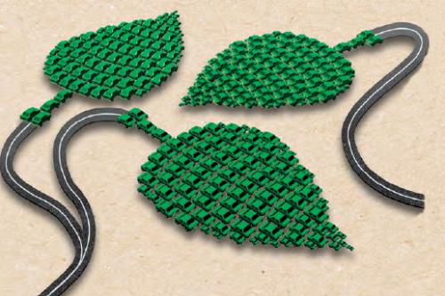 Green Rcaipple