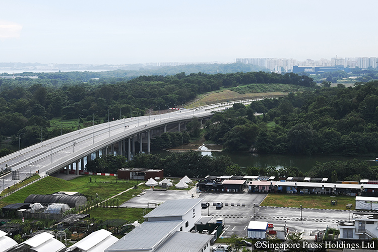 walking and cycling in singapore_punggol like to tpe and kpe