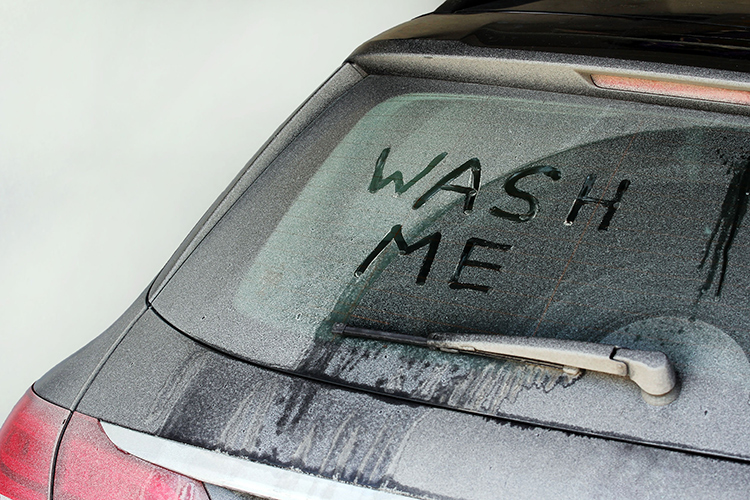 new car owners never wash