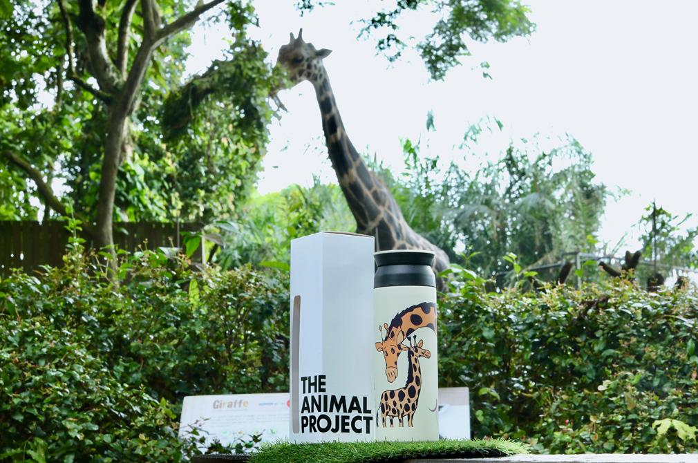 singapore zoo giraffe tumbler