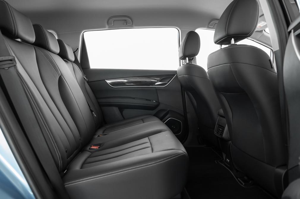 BYD e6 backseat